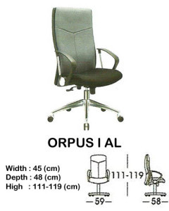 kursi director & manager indachi orpus I al